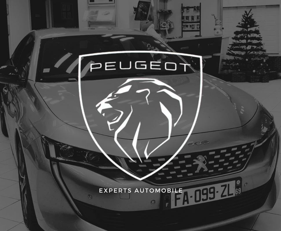 Garage Peugeot villeurbanne